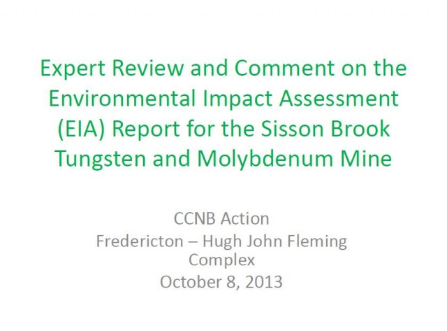 CCNB_EIAreview