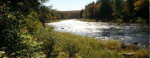 Conservation Council comments on Sisson Mine project environmental assessment report