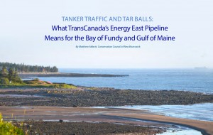 New Report Shows TransCanada's Proposed Energy East Pipeline Project A Major Risk for the Communities of the Bay of Fundy-Gulf of Maine