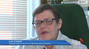 Lois Corbett on protecting NB's water and growing the green economy