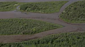 Statement by CCNB's Lois Corbett on major oil pipeline break in Saskatchewan