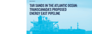 Sensitive Marine Ecosystems Threatened by Energy East's 'Aquatic Pipeline'