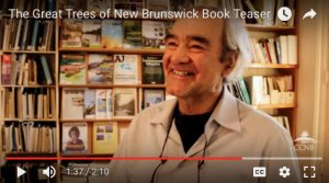 Watch The Great Trees of New Brunswick Book Teaser