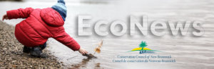 EcoNews — Smart stewardship, help for whales, and a big 'thank you!'