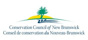Conservation Council statement on federal carbon pricing plan