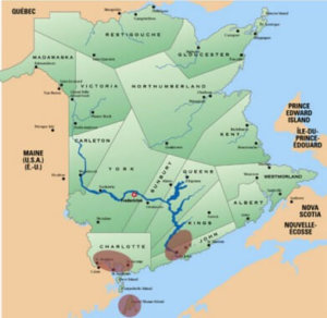 Limit the risk, not your in time in nature: May is Lyme Disease Awareness Month in NB