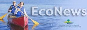EcoNews —  Coastal protection, failure to communicate, and paddling the Musquash