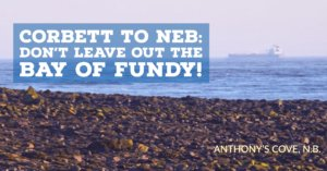 NEB gets failing grade on Bay of Fundy impacts, says Corbett