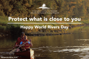 Protect what is close to you, on World Rivers Day
