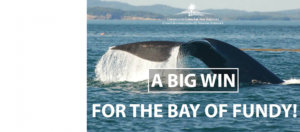A big win for the Bay of Fundy
