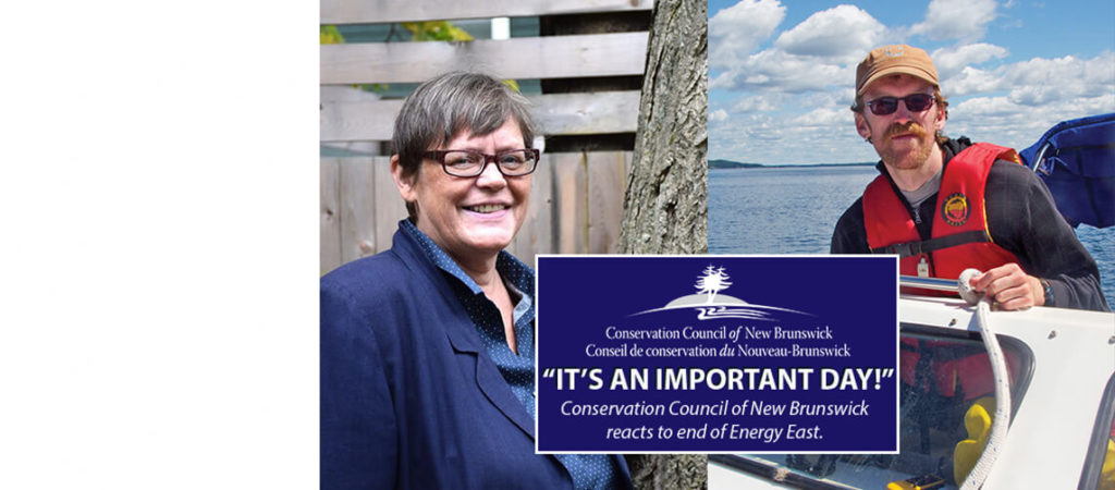 Relief and hope: Conservation Council reacts to end of Energy East