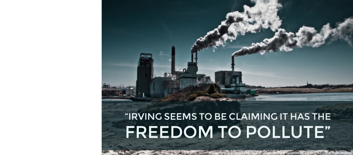Irving claims pollution charges against it are unconstitutional