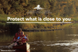 Conservation Council's recommendations for a strong water strategy