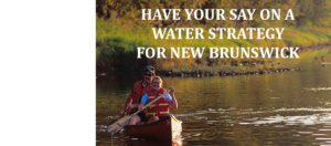 Have your say on a water protection strategy for NB!