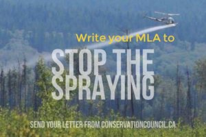 Dr. Vrain talks longterm health impacts of glyphosate with CBC