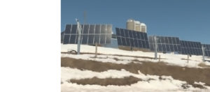 Solar herd: check out N.B's first solar farm on Open Farm Day!