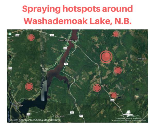 Washademoak Lake - Spraying