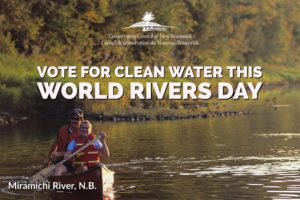 Vote for strong water protection on this World Rivers Day