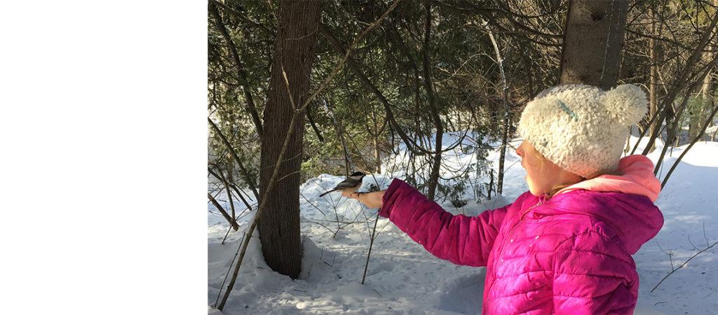 La protection de la nature du Nouveau-Brunswick : un sujet sur lequel nous sommes tous d'accord