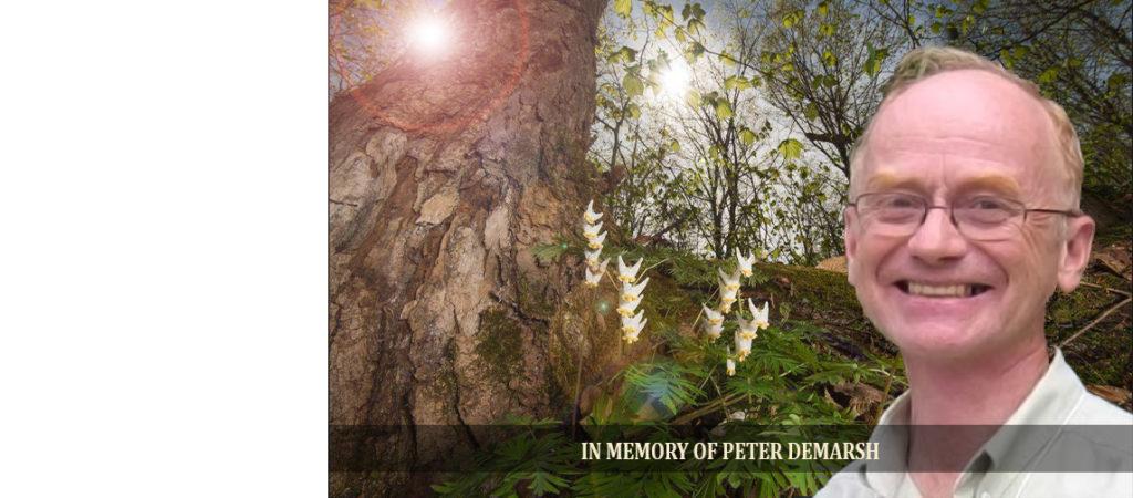 In memory of Peter deMarsh