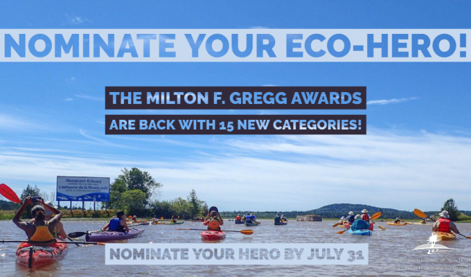 nominate eco hero