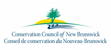 CCNB-logo-HR-Vector (1)